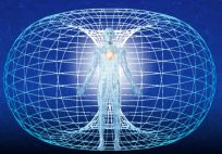 heart's electromagnetic field